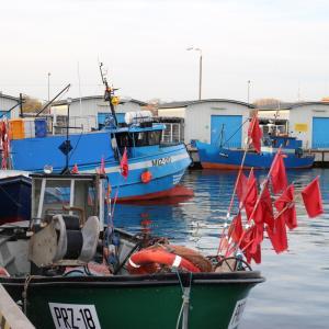 rybyportal.jpg